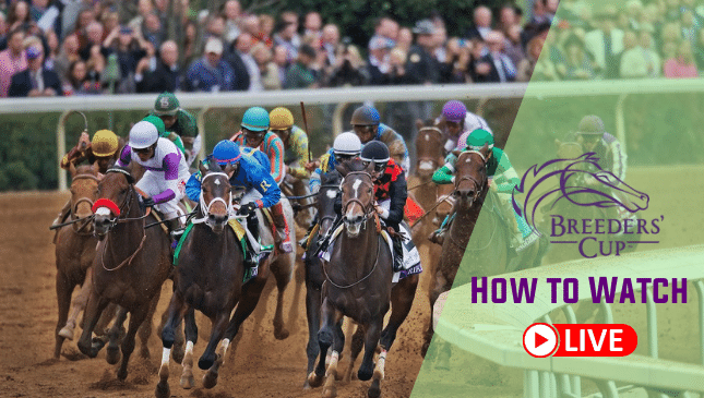 Breeders Cup 2021 Live